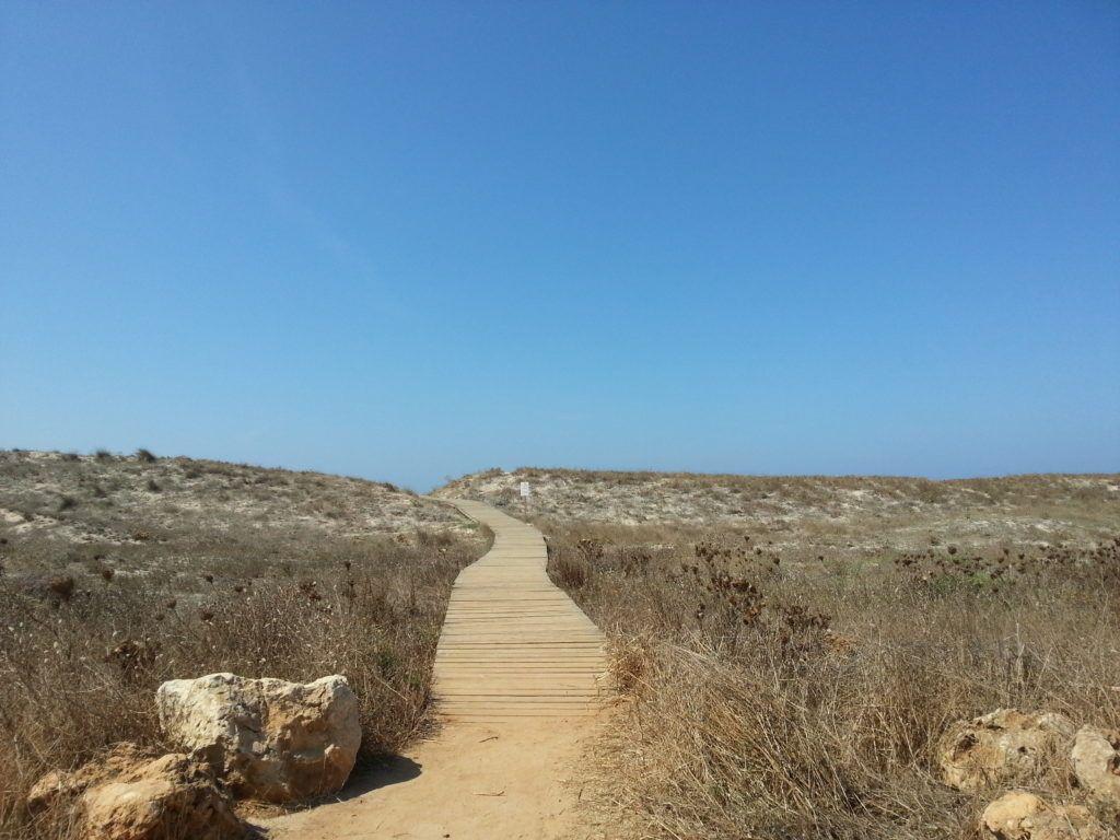 Sulla strada per la spiaggia di Maimoni - Sinis - Cabras